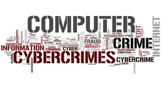 """Helmbrecht at Council of Europe """"Octopus"""" cyber crime conference"""