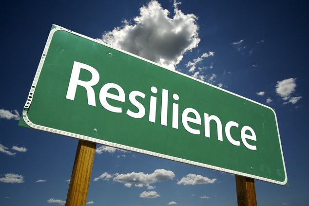 EU Public-Private Partnership on Resilience Workshop 16-17 March