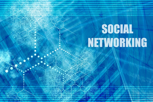 Focus article: Mobile Social Networking in the limelight