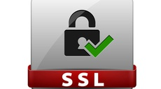 Privacy revisited: clearer icons, standards and evaluation of online seals are needed for online trust