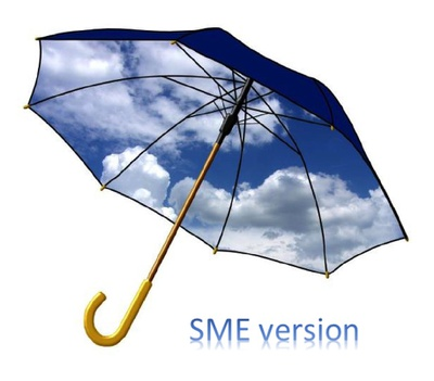 Security Guide for SMEs